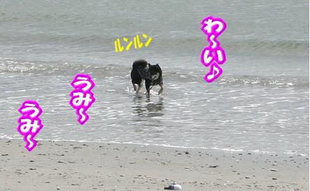 201013-7.jpg