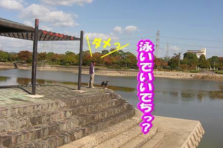 201102-1.jpg
