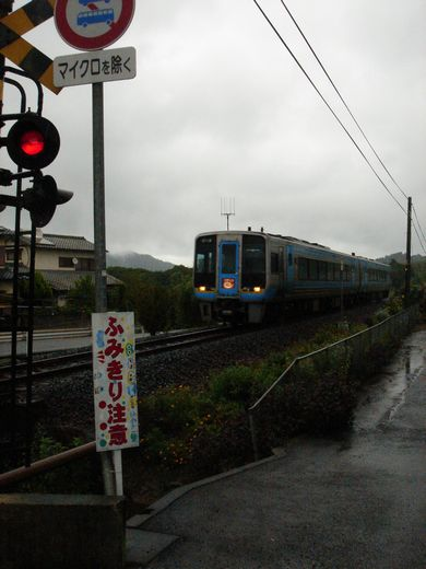 DSC00137-1.jpg