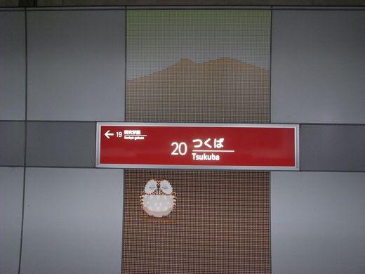 R0014216-1.jpg
