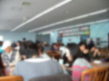 IMGP3981.jpg