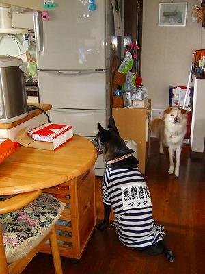 2009_0103kukku0160.jpg