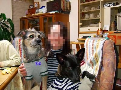 2009_0103kukku0172.jpg
