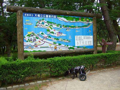 2009_0608kukku0218.jpg