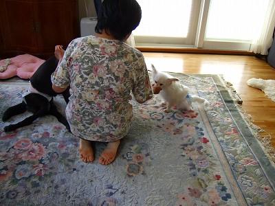 2009_0614kukku0245.jpg