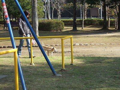 2009_1130kukku0093.jpg