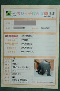 DSC_0072_20080302173453.jpg