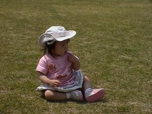 芝生公園1