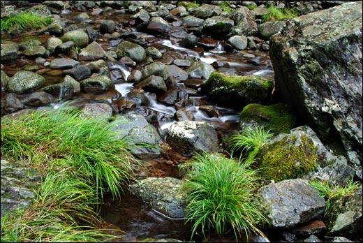 阿弥陀ヶ滝の水
