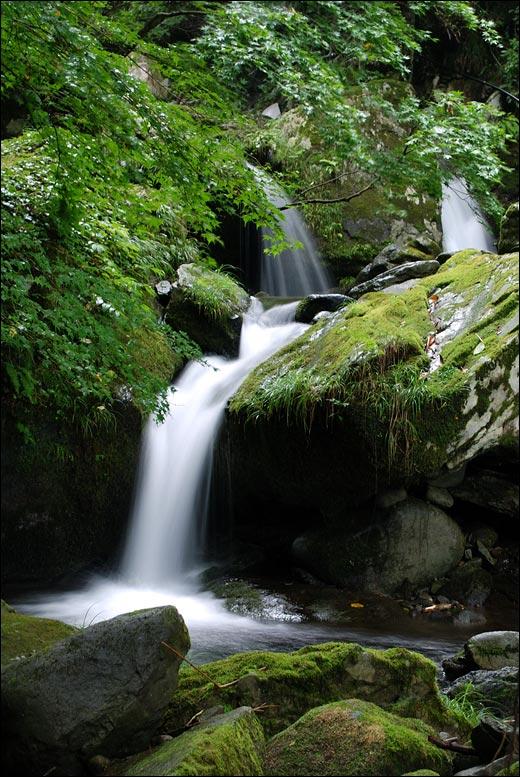 阿弥陀ヶ滝下流
