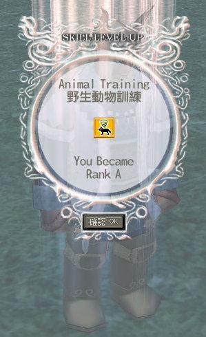 野生動物訓練A