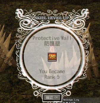 防護壁Rank5