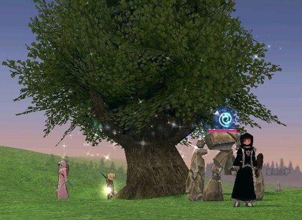 大樹長大了