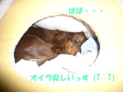 1024-01.jpg