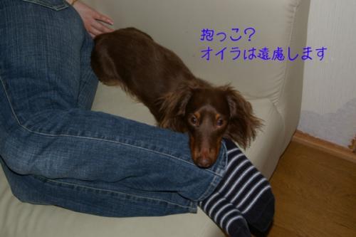 20070501-01.jpg