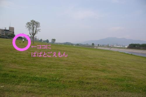 20070508-06.jpg
