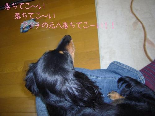 20070516-03.jpg