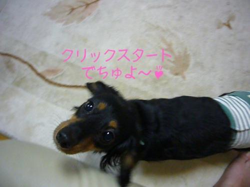 20070605-01.jpg