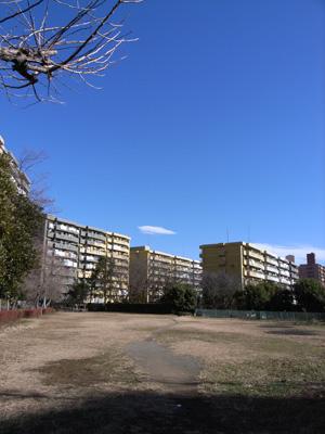 2009正月の空