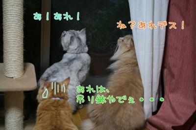 Mint&Moca&Kotetsu 捜査ー2