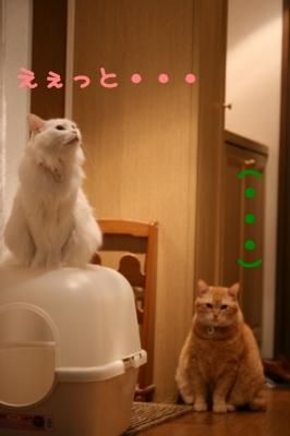 Kotetsu&Jill えぇっと・・・