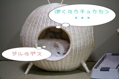 Mint&Jill ウチュウセン デモ ナカヨシ??