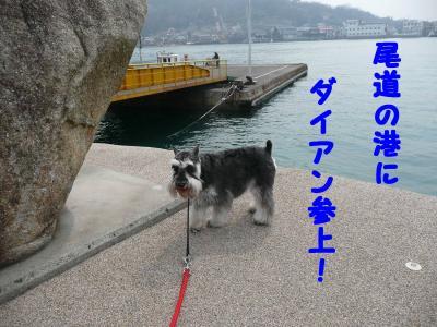ダイアン尾道1-s