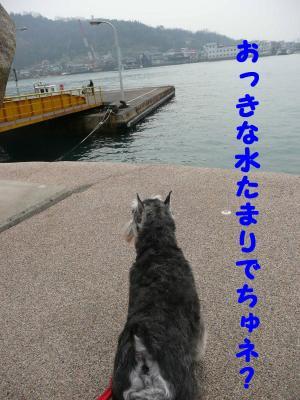 ダイアン尾道3-s