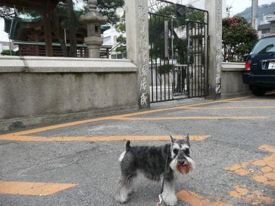 ダイアン尾道4-s