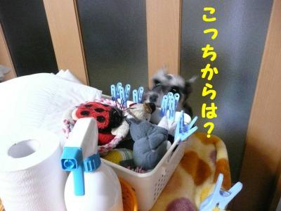 ダイアンとおもちゃ箱2-s