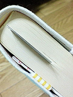 20090122184841