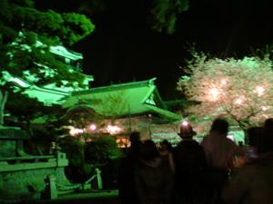 岡崎城でお花見&バーベキュー
