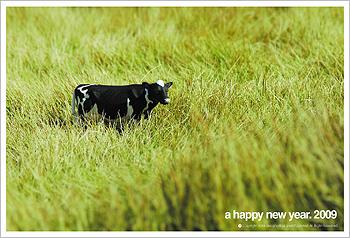 新年明けましてオメデトウございます