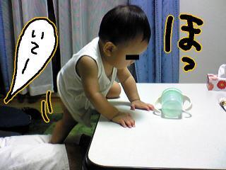 Image084.jpg