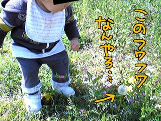 a-blog202.jpg