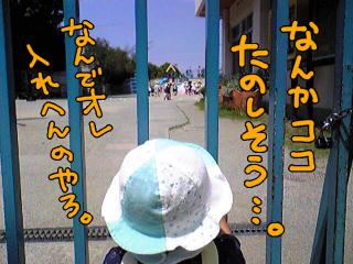 a-blog217.jpg