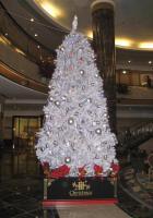国際ホテルのツリー