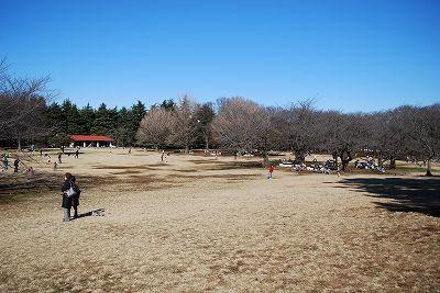 練馬区光が丘公園