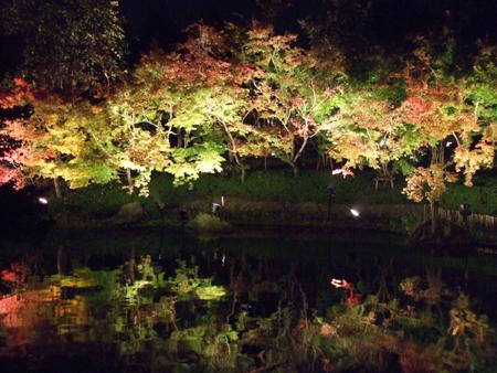 鏡池 紅葉