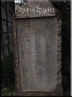 293-92.jpg