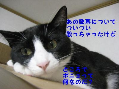 2IMG_1642.jpg