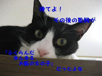 4IMG_1650.jpg