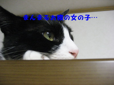 5IMG_1640.jpg