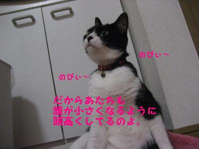 IMG_1297.jpg