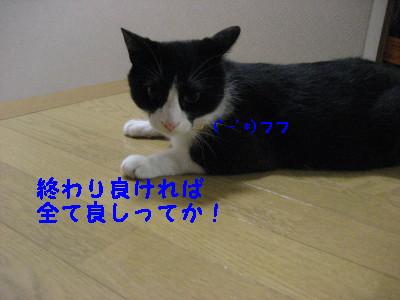 IMG_1332_20080822094609.jpg