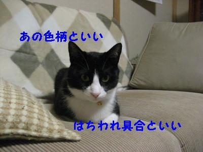 IMG_1518.jpg