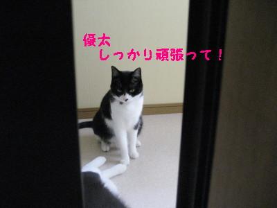 IMG_1552.jpg