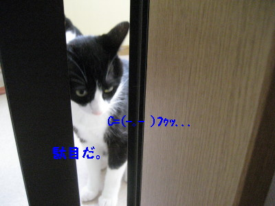 IMG_1560.jpg