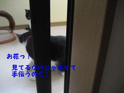 IMG_1563.jpg