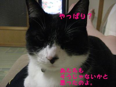 IMG_1609.jpg
